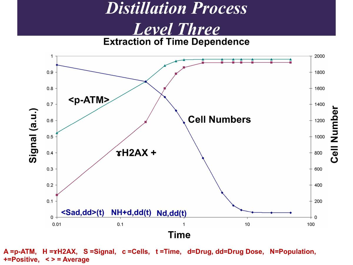 Distillation Process Level Three  Extraction of Time Dependence  Cell Numbers   H2AX     Sad,dd  t  NH d,dd t  Nd,dd t   T...