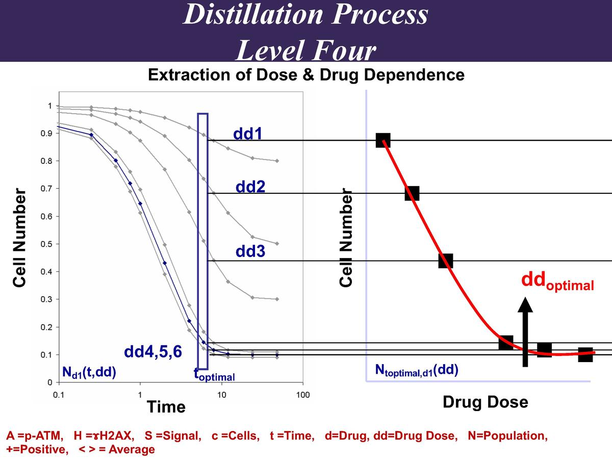 Distillation Process Level Four  Extraction of Dose   Drug Dependence  Cell Number  dd2  dd3  Cell Number  dd1  ddoptimal ...
