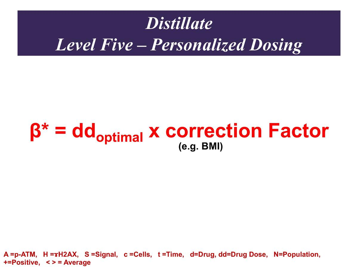 Distillate Level Five     Personalized Dosing        ddoptimal x correction Factor  e.g. BMI   A  p-ATM, H    H2AX, S  Sig...