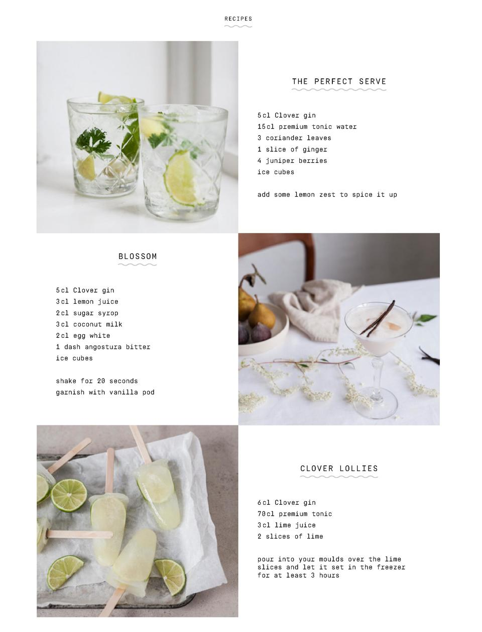 RECIPES  THE PERFECT SERVE  5 cl Clover gin 15 cl premium tonic water 3 coriander leaves 1 slice of ginger 4 juniper berri...