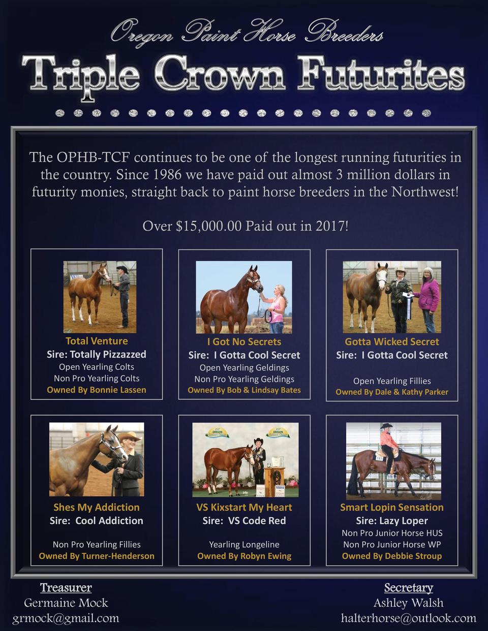 11  2017 NWCC Paint Horse Directory