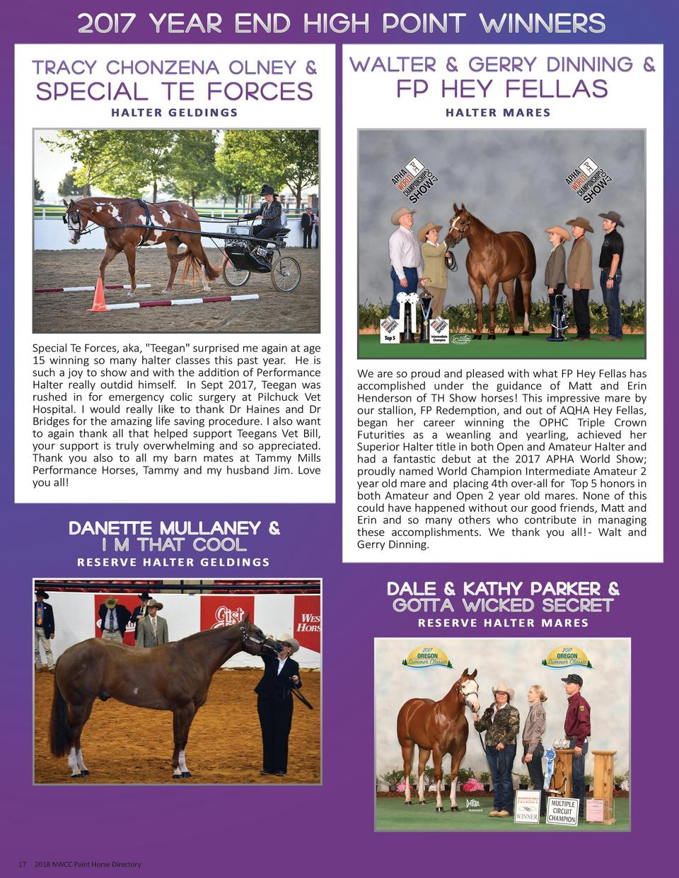 17  2018 NWCC Paint Horse Directory