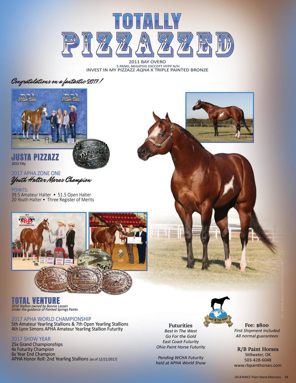 2017 NWCC Paint Horse Directory 2018  38