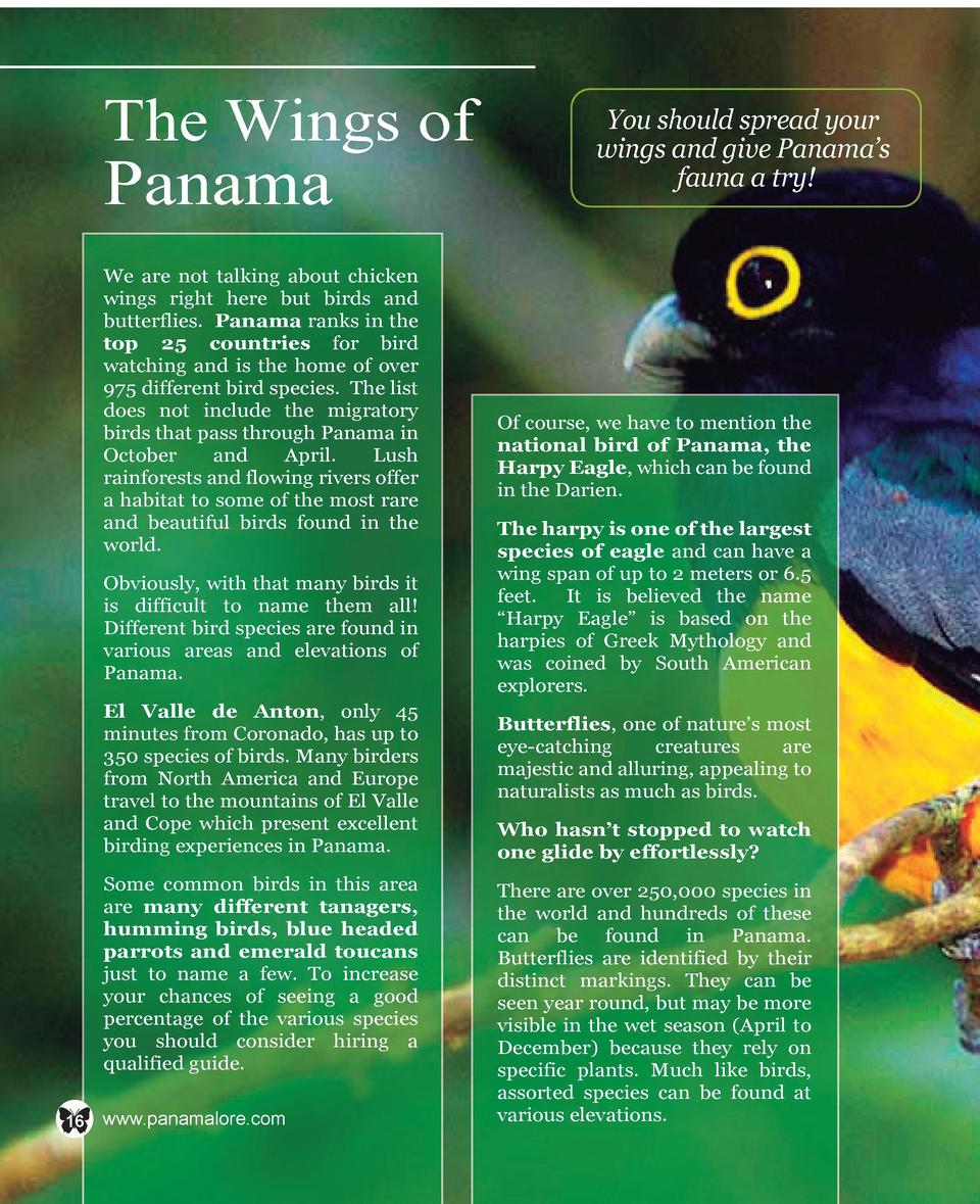 The Wings of  Panama  We are not talking about chicken wings right here but birds and butterflies. Panama ranks in the top...