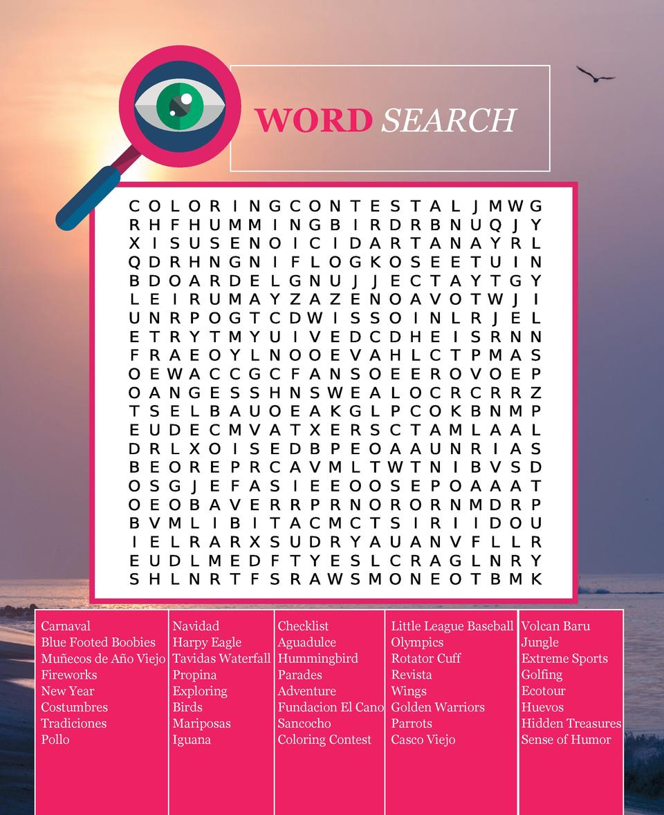 WORD SEARCH  Carnaval Blue Footed Boobies Mu  ecos de A  o Viejo Fireworks New Year Costumbres Tradiciones Pollo  Navidad ...