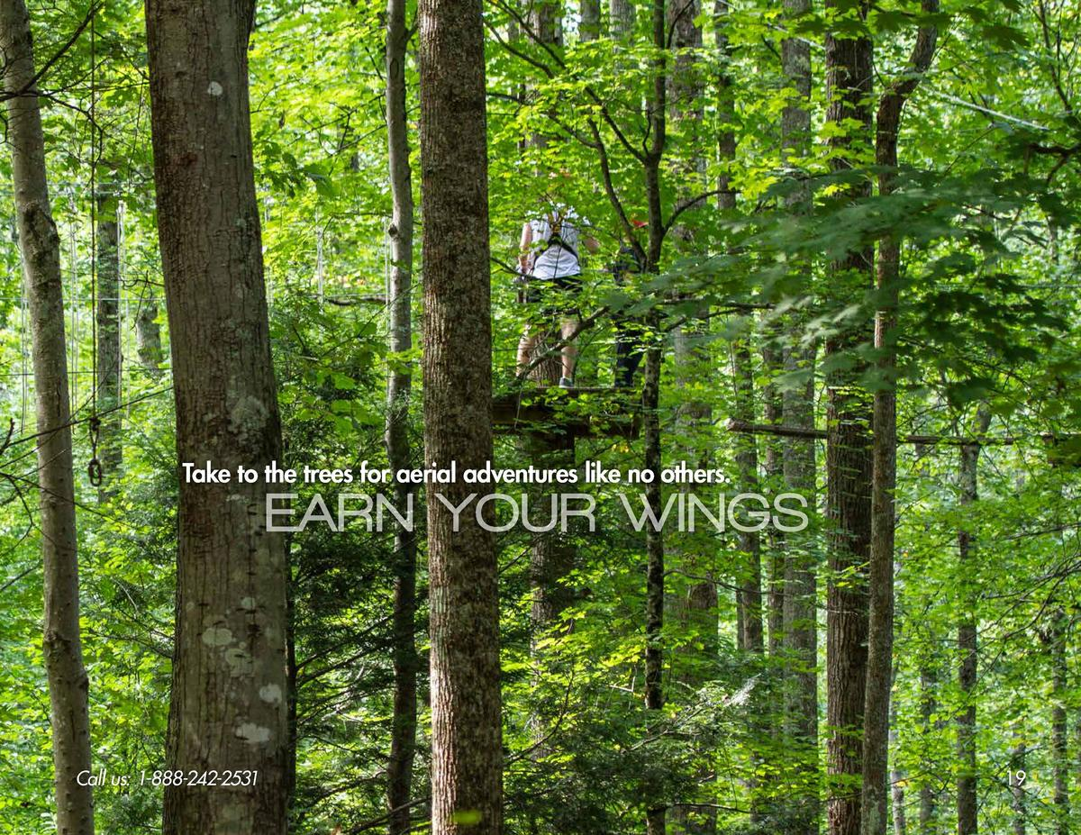 Take to the trees for aerial adventures like no others.  EARN YOUR WINGS  Call us  1-888-242-2531  19
