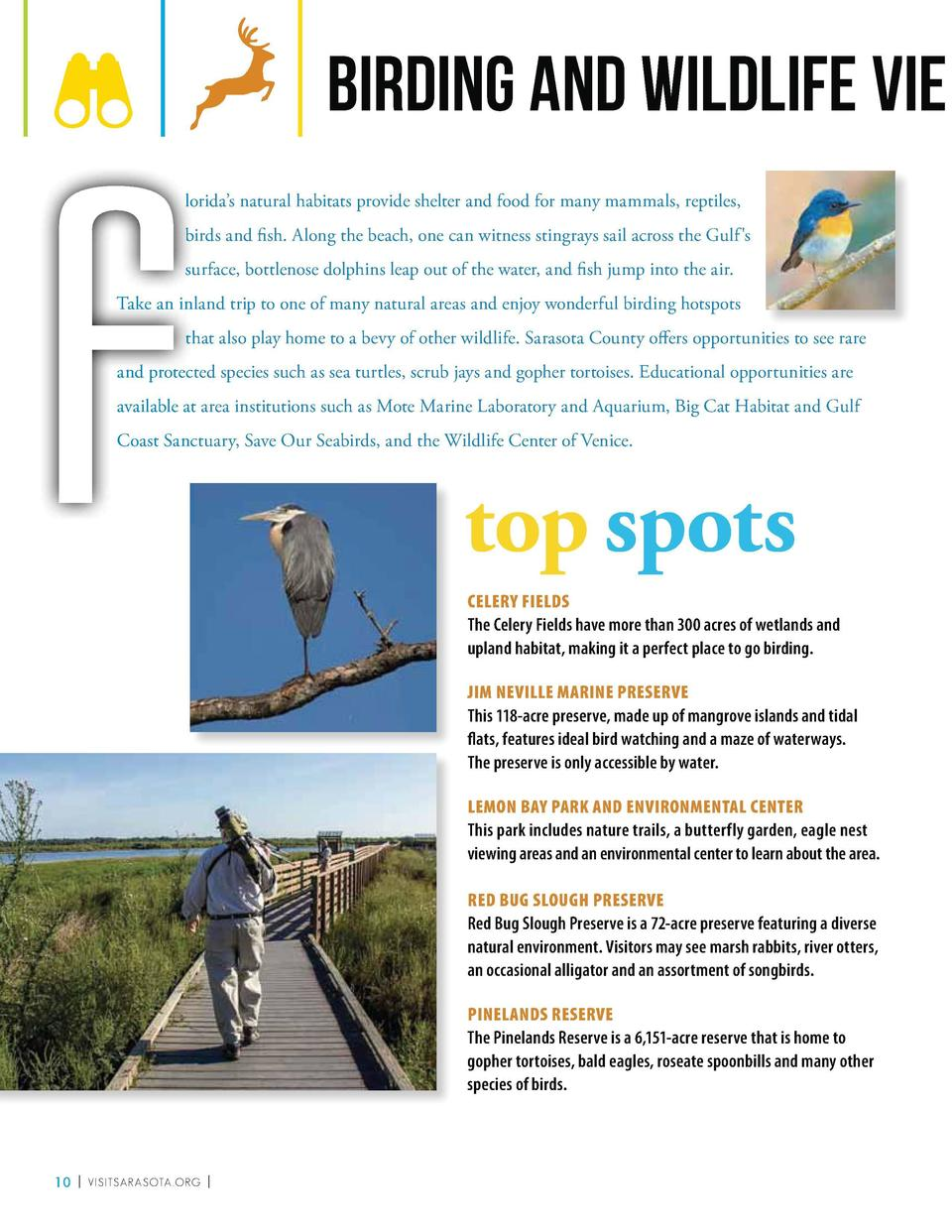 F  BIRDING AND WILDLIFE VIE WING llorida   s natural habitats provide shelter and food for many mammals, reptiles, lo bbir...