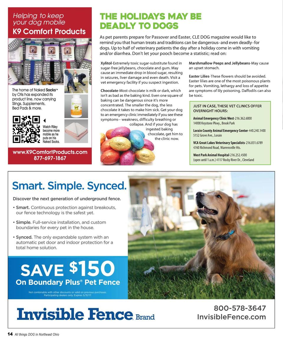 THE HOLIDAYS MAY BE DEADLY TO DOGS As pet parents prepare for Passover and Easter, CLE DOG magazine would like to remind y...