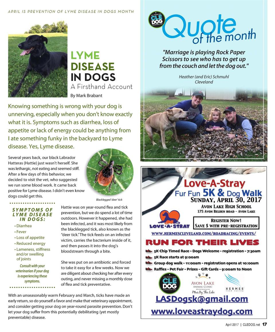 APRIL IS PREVENTION OF LYME DISEASE IN DOGS MONTH  To Board or Not to Board continued Nancy Brown, owner of Hot Diggity Do...