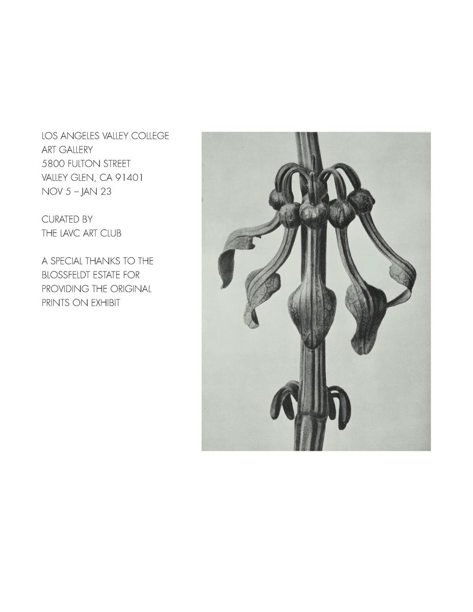 LOS ANGELES VALLEY COLLEGE ART GALLERY 5800 FULTON STREET VALLEY GLEN, CA 91401 NOV 5     JAN 23 CURATED BY THE LAVC ART C...