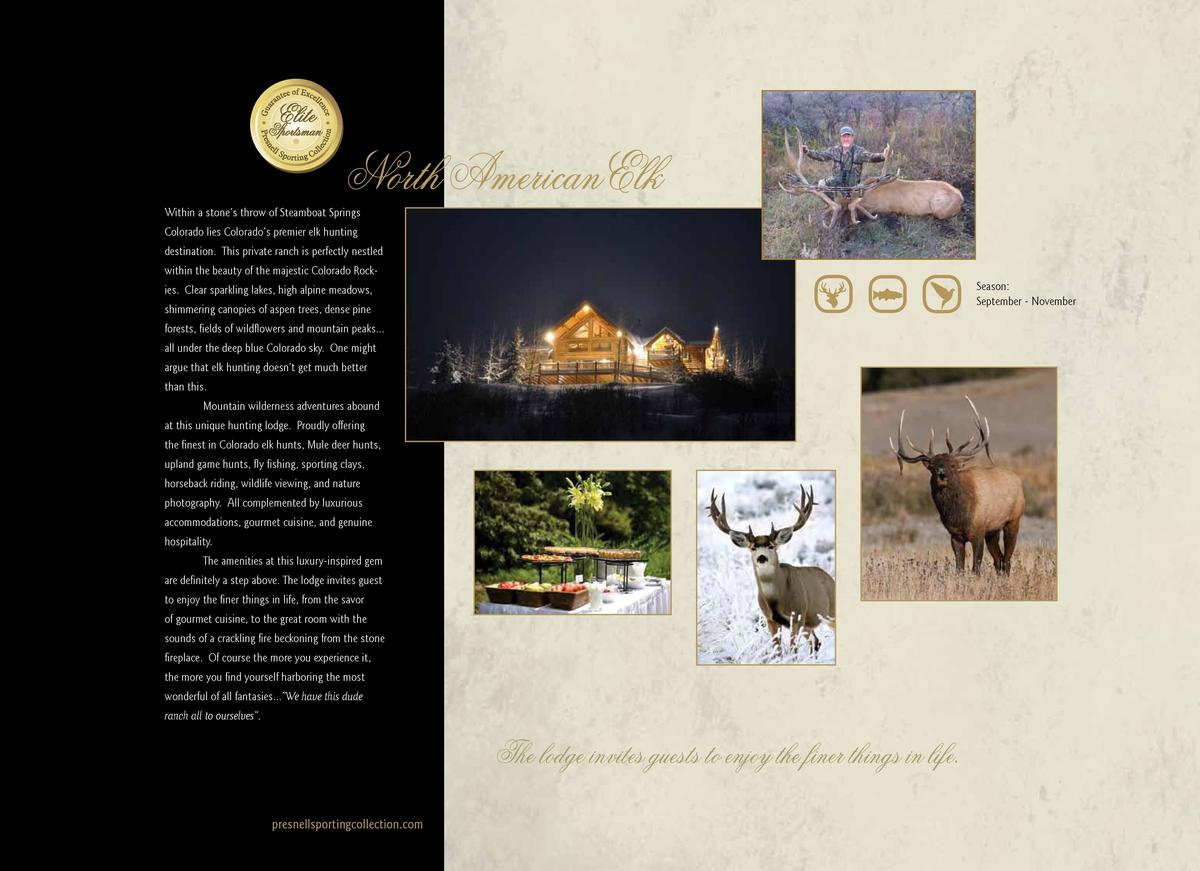 North American Elk  Within a stone   s throw of Steamboat Springs Colorado lies Colorado   s premier elk hunting  destinat...