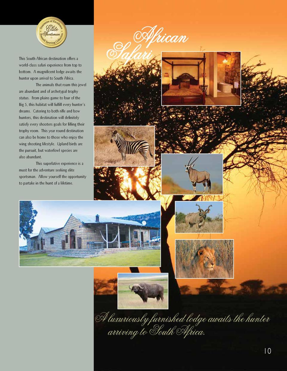 This South African destination offers a world-class safari experience from top to  African Safari  bottom. A magnificent l...