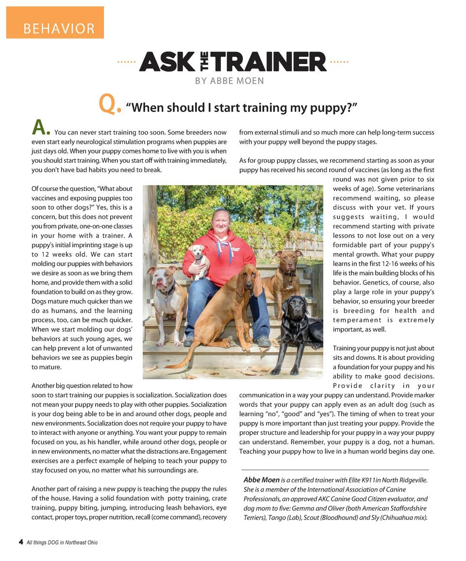BEHAVIOR  B Y ABBE MOEN  A.  Q.    When should I start training my puppy      You can never start training too soon. Some ...