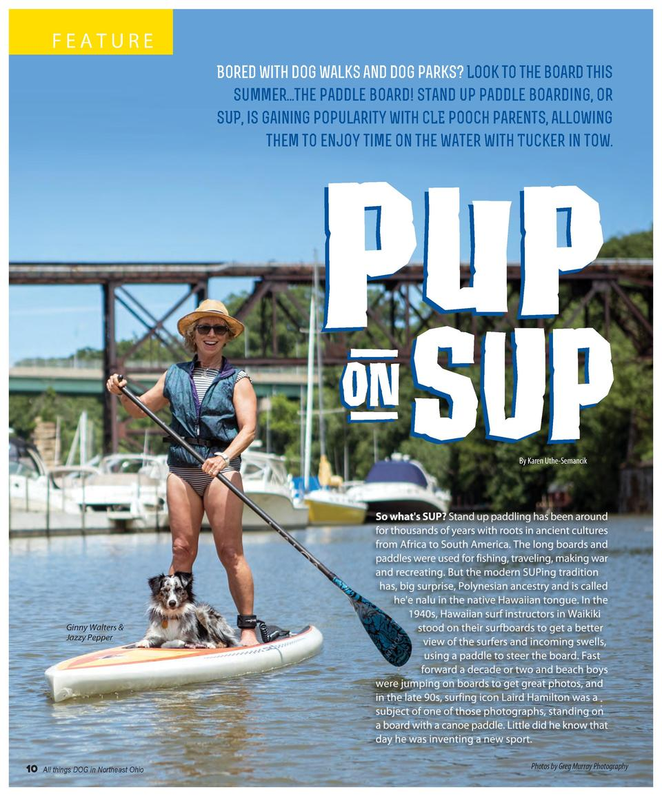 FEATURE Bored with dog walks and dog parks  Look to the board this summer...the paddle board  Stand up paddle boarding, or...