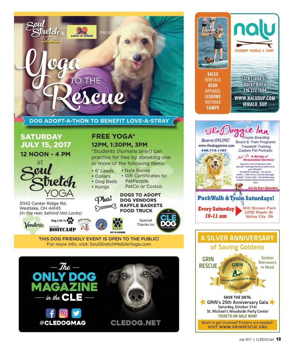 A SILVER ANNIVERSARY of Saving Goldens Golden Retrievers In Need  GRIN RESCUE  SAVE THE DATE   GRIN   s 25th Anniversary G...