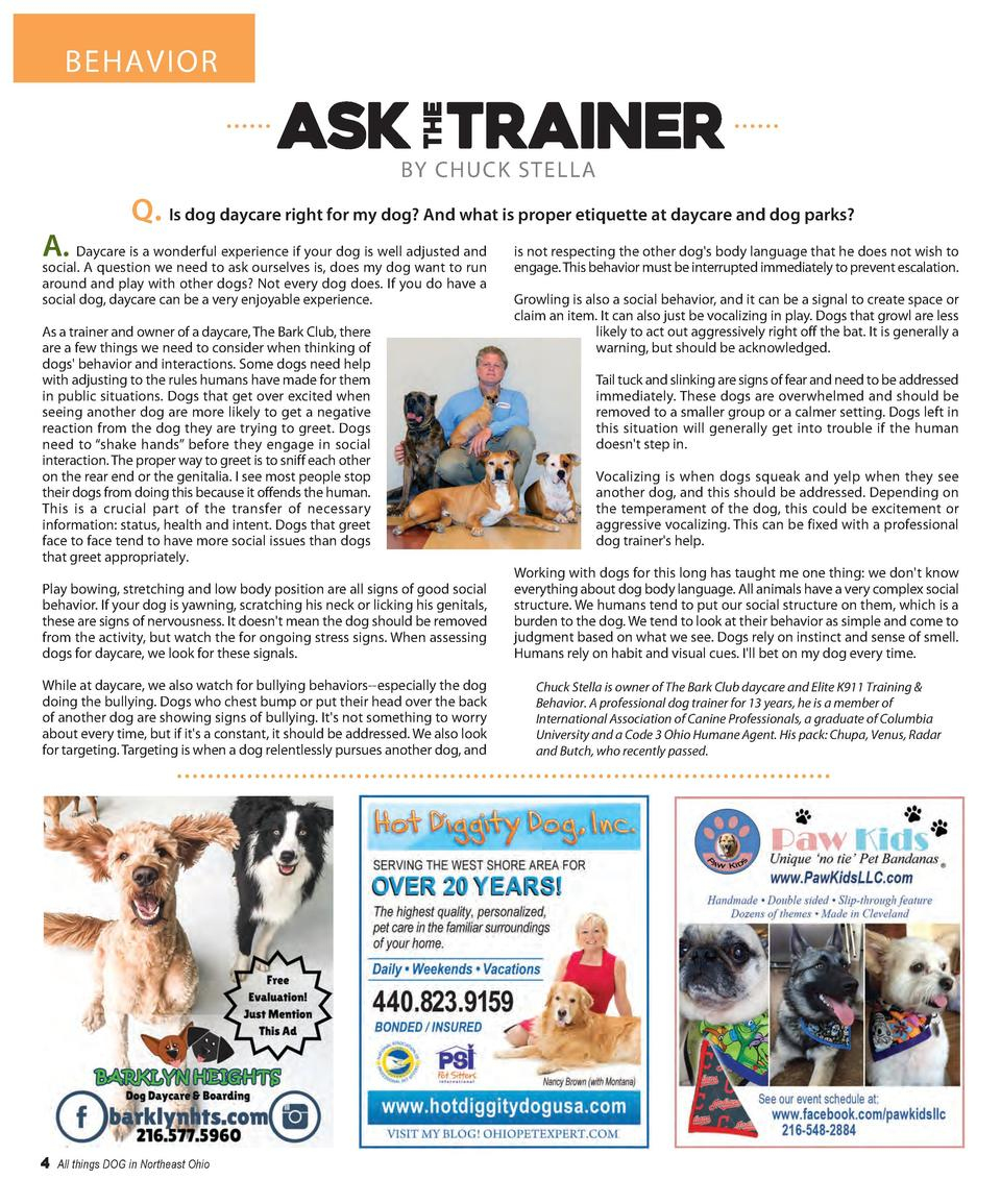 BEHAVIOR  BY CHUCK STELLA  Q. Is dog daycare right for my dog  And what is proper etiquette at daycare and dog parks  A.  ...