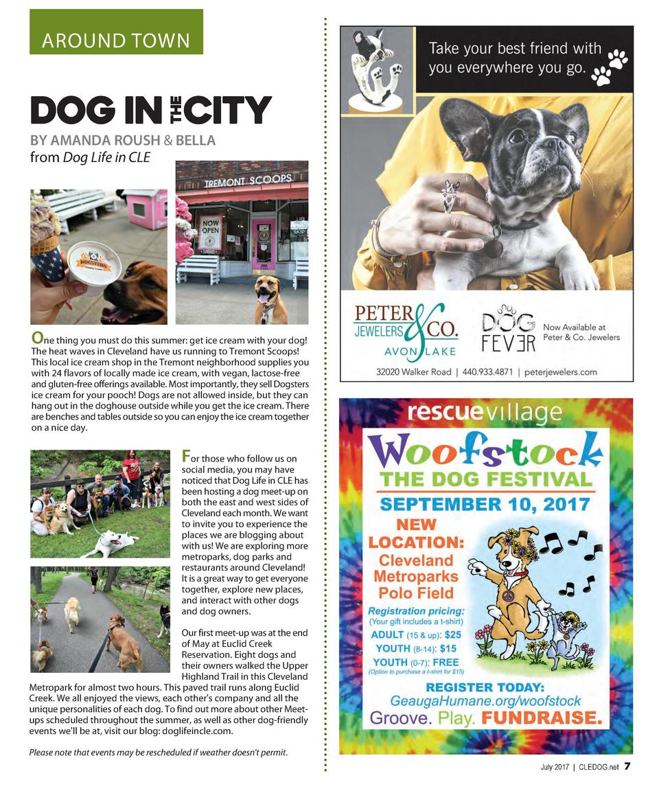 AROUND TOWN  BY AMANDA ROUSH   BELLA from Dog Life in CLE  One thing you must do this summer  get ice cream with your dog ...