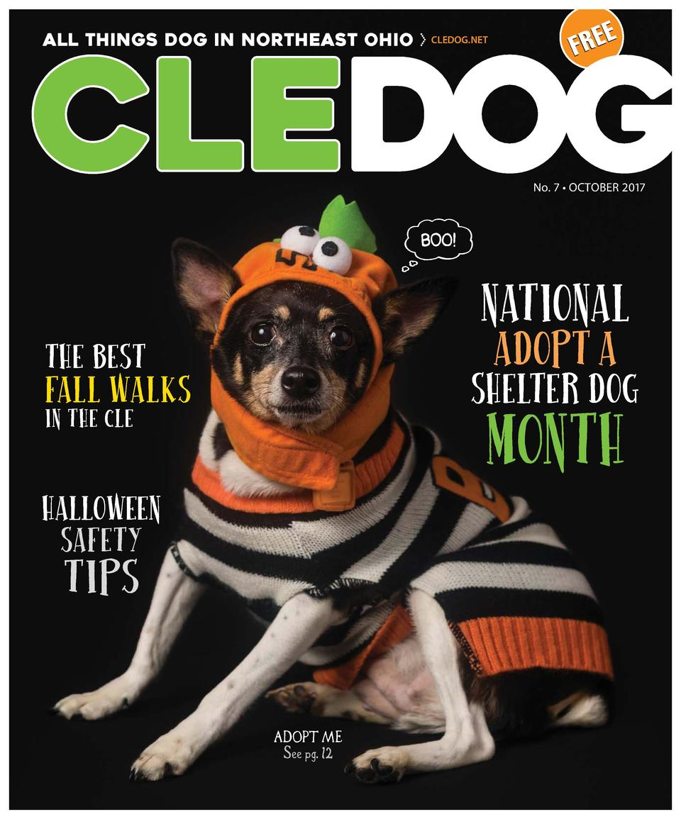 ALL THINGS DOG IN NORTHEAST OHIO  CLEDOG.NET  E FRE  No. 7     OCTOBER 2017  NATIONAL ADOPT A  THE BEST  SHELTER DOG  FALL...