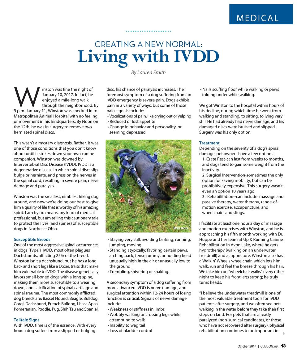 MEDICAL CREATING A NEW NORMAL   Living with IVDD By Lauren Smith inston was fine the night of January 10, 2017. In fact, h...