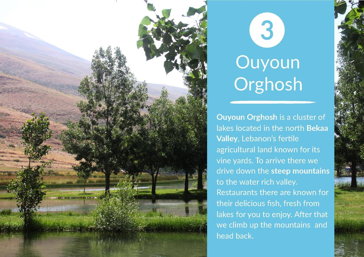 3 Ouyoun Orghosh Ouyoun Orghosh is a cluster of lakes located in the north Bekaa Valley, Lebanon   s ferNle agricultural l...