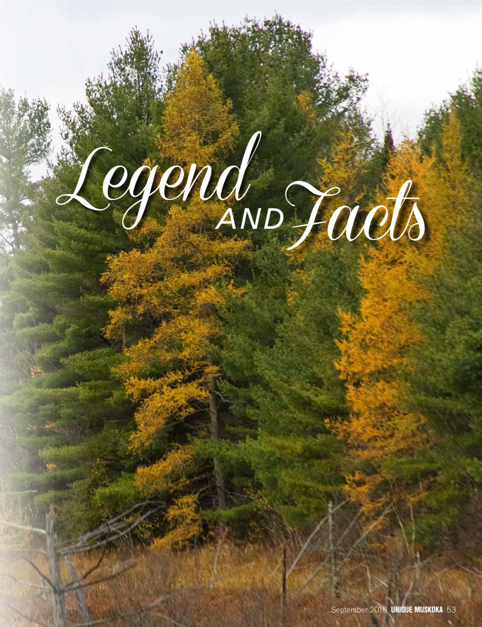 Legend ANDFacts  September 2018 UNIQUE MUSKOKA 53