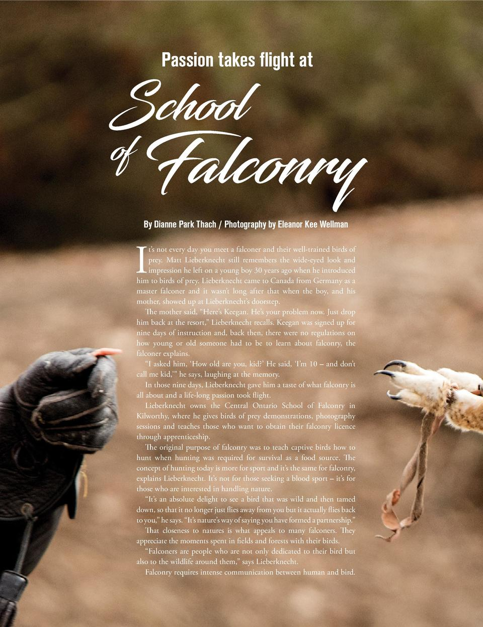 Passion takes flight at  School  of  By Dianne Park Thach   Photography by Eleanor Kee Wellman  Falconry  I  t   s not eve...