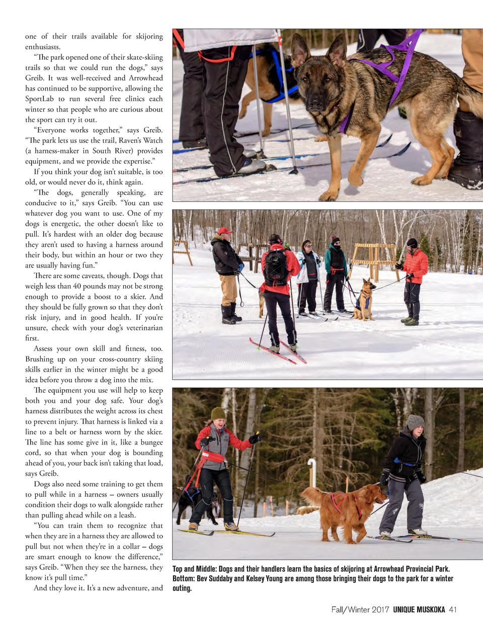one of their trails available for skijoring enthusiasts.    The park opened one of their skate-skiing trails so that we co...
