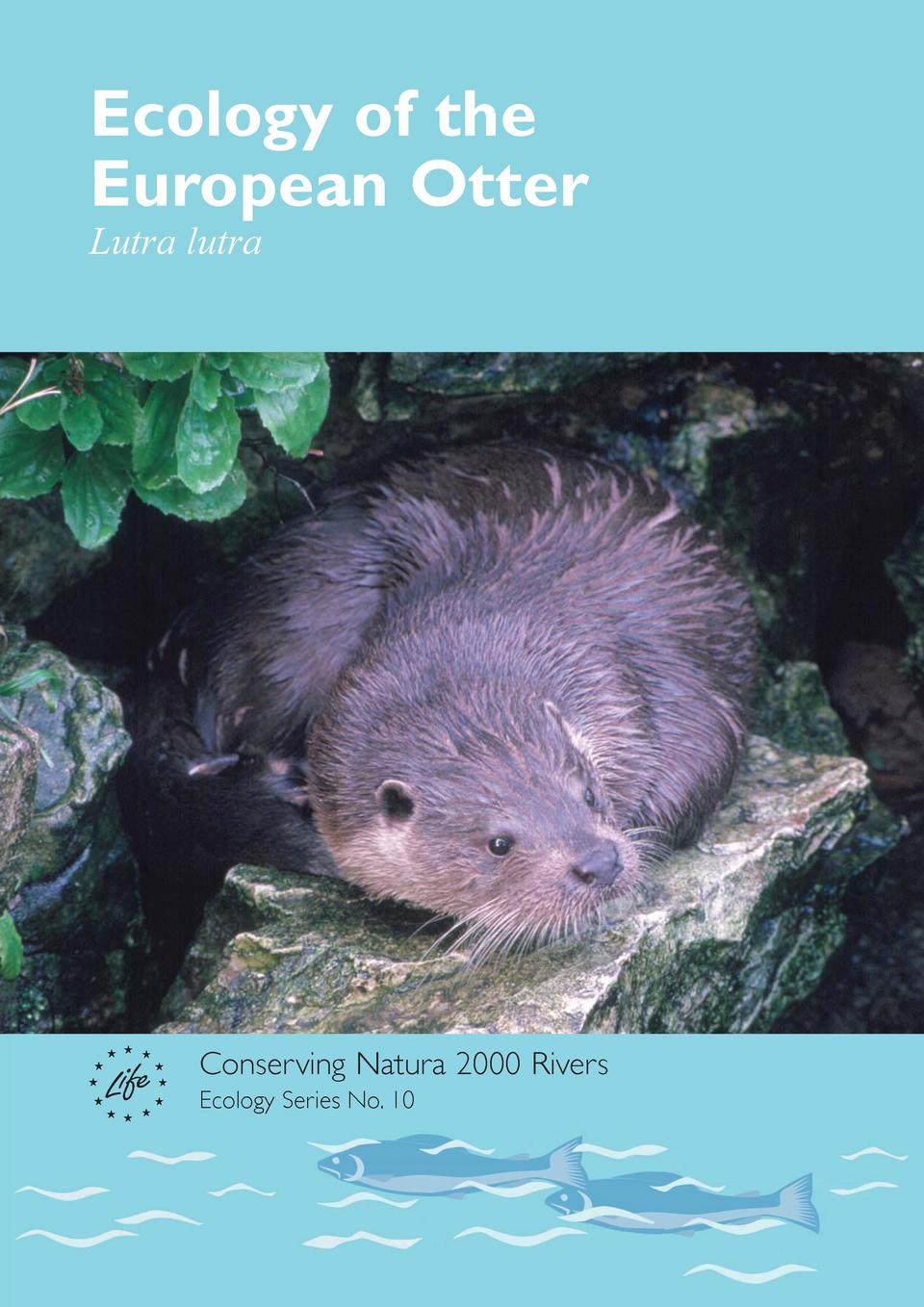 Ecology of the European Otter Lutra lutra  Conserving Natura 2000 Rivers Ecology Series No. 10