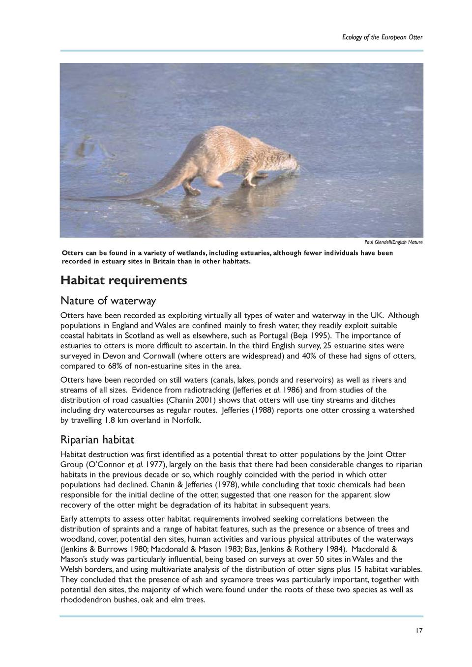 Ecology of the European Otter  Paul Glendell English Nature  Otters can be found in a variety of wetlands, including estua...