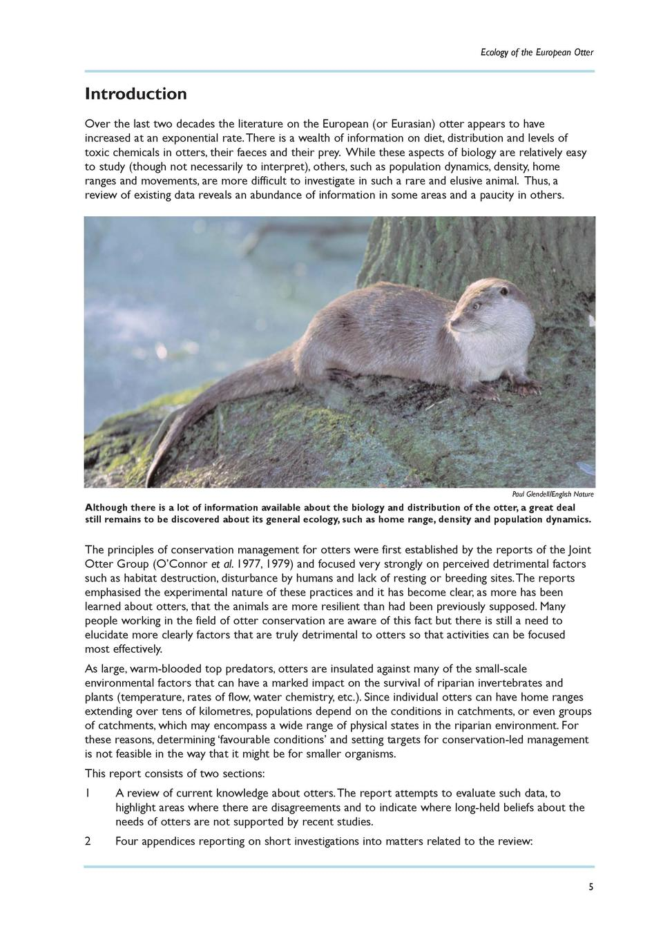 Ecology of the European Otter  Introduction Over the last two decades the literature on the European  or Eurasian  otter a...