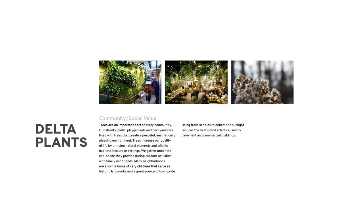 DELTA PLANTS  Community Social Value  119  Environmental Value  Trees are an important part of every community.  Using tre...