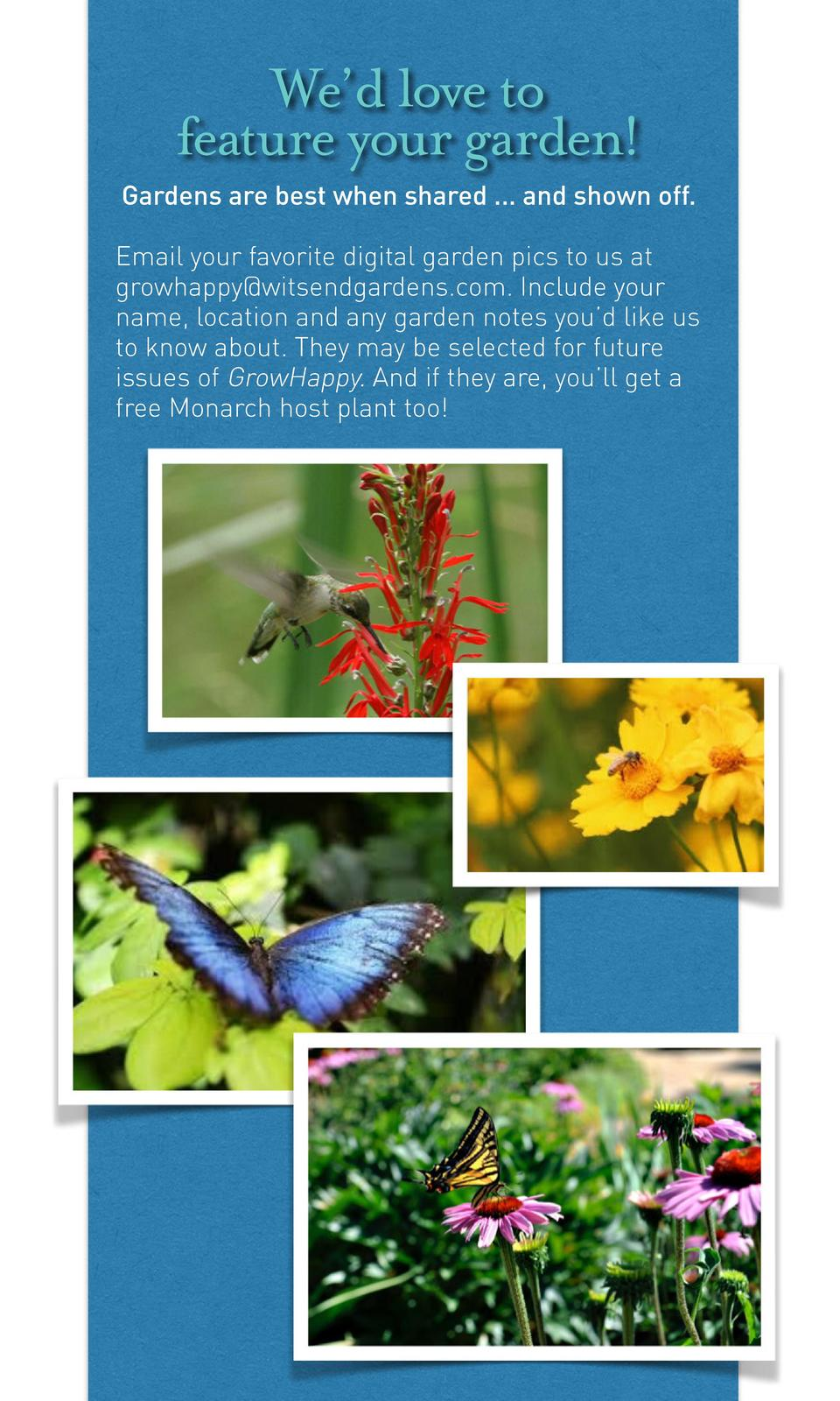 We   d love to feature your garden  Gardens are best when shared ... and shown off. Email your favorite digital garden pic...