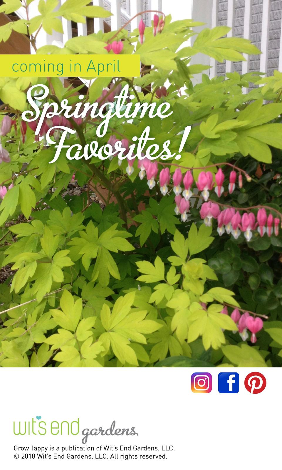 coming in April  Springtime Favorites   GrowHappy is a publication of Wit   s End Gardens, LLC.    2018 Wit   s End Garden...