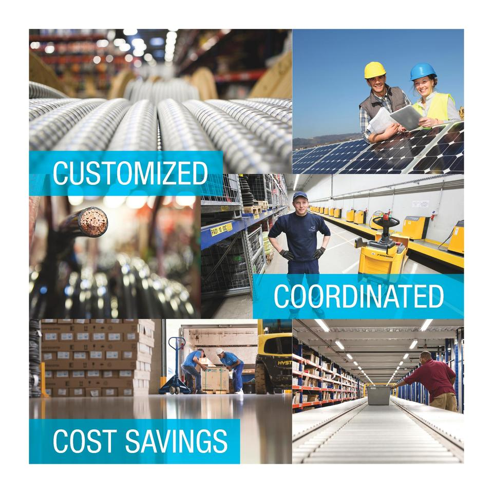 CUSTOMIZED  COORDINATED  COST SAVINGS