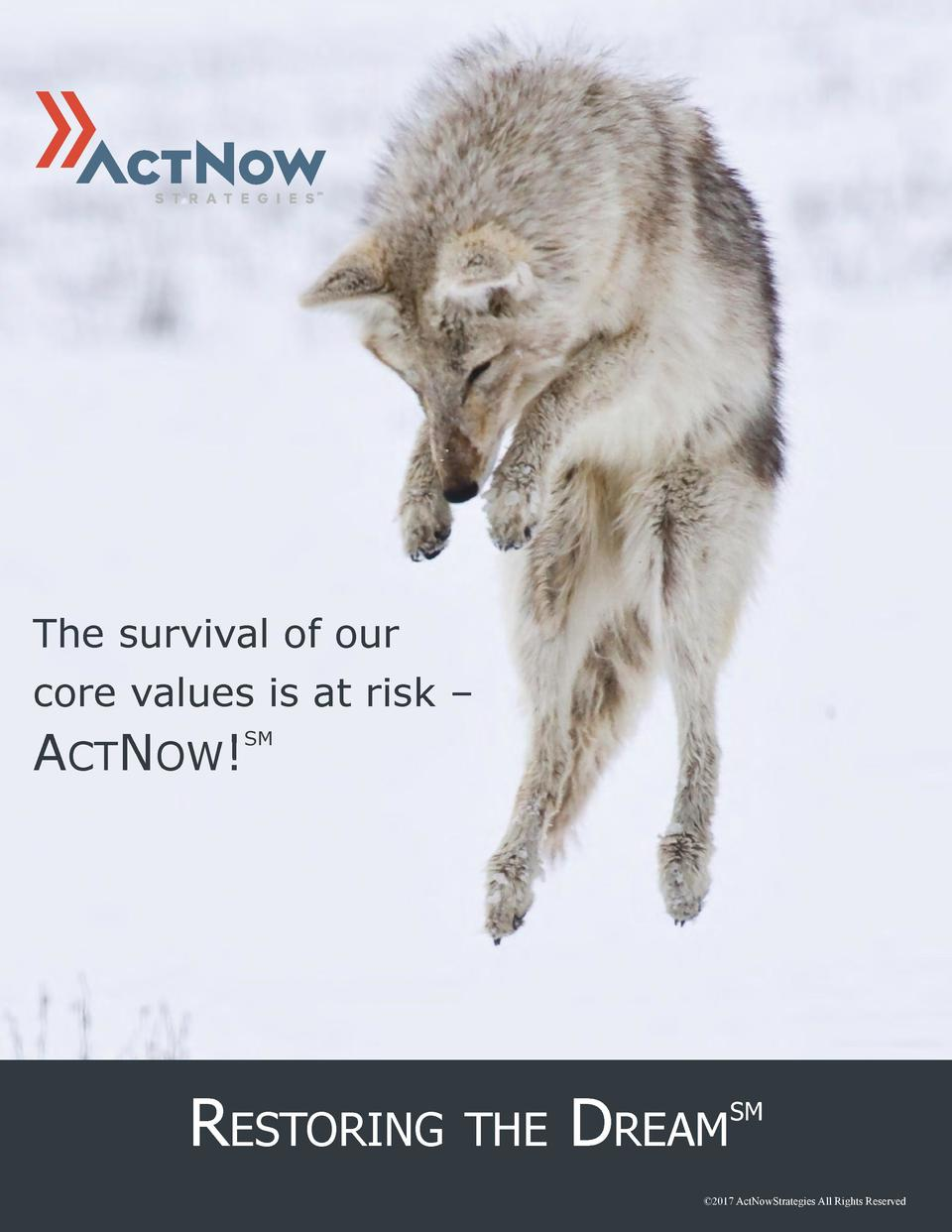 The survival of our core values is at risk      ACTNOW   SM  RESTORING  THE  DREAM  SM    2017 ActNowStrategies All Rights...