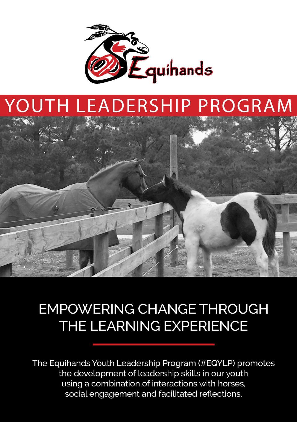 YOUTH LEADERSHIP PROGRAM  EMPOWERING CHANGE THROUGH THE LEARNING EXPERIENCE The Equihands Youth Leadership Program   EQYLP...