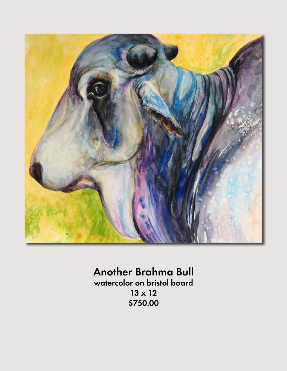 Another Brahma Bull watercolor on bristol board 13 x 12  750.00