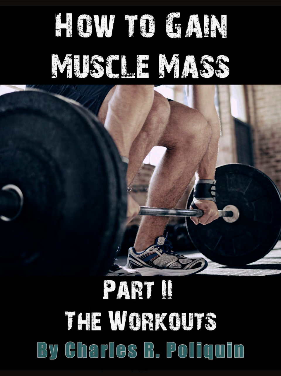 How To Gain Muscle Mass : simplebooklet com