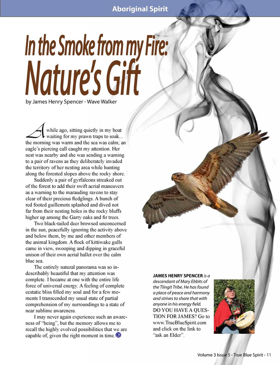 Aboriginal Spirit  In the Smoke from my Fire   Nature   s Gift by James Henry Spencer - Wave Walker      Br  en  da  Ca  r...