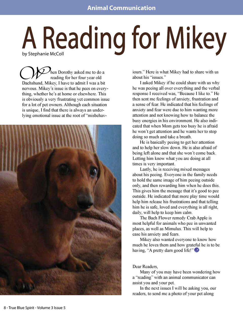 Animal Communication  A Reading for Mikey by Stephanie McColl  W  hen Dorothy asked me to do a reading for her four year o...