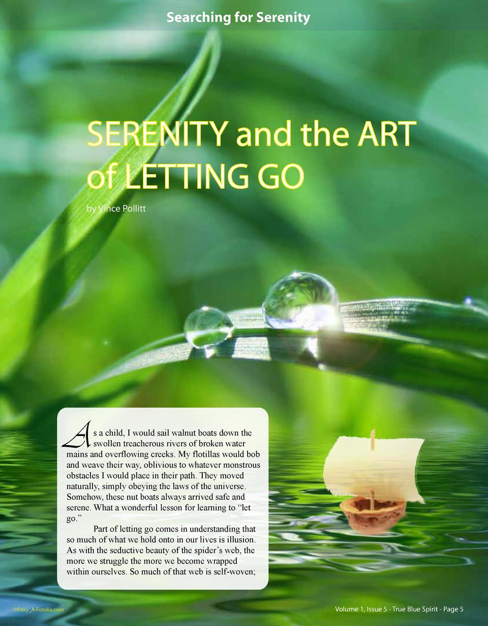 Searching for Serenity  SERENITY and the ART of LETTING GO by Vince Pollitt  sma-Fotolia.co m    Foxy_A-Fotolia.com     co...