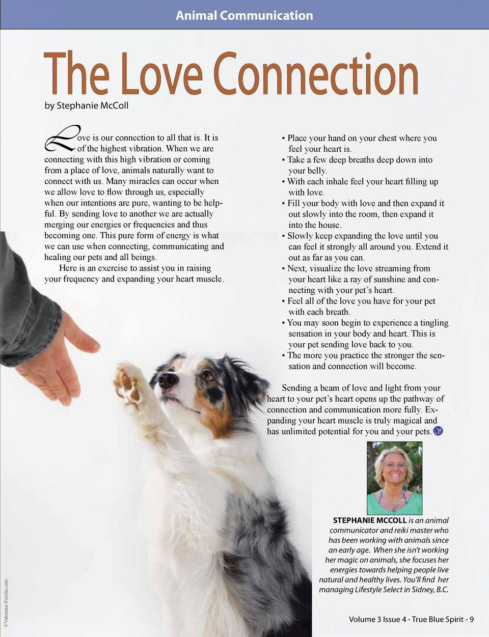 Animal Communication  The Love Connection by Stephanie McColl  L  ove is our connection to all that is. It is of the highe...