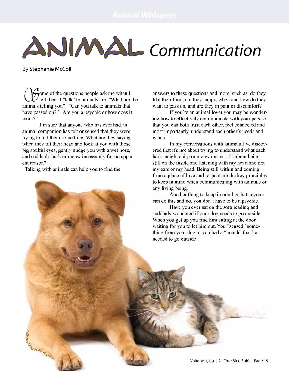 Animal Whispers  Animal Communication By Stephanie McColl  S  ome of the questions people ask me when I tell them I    tal...