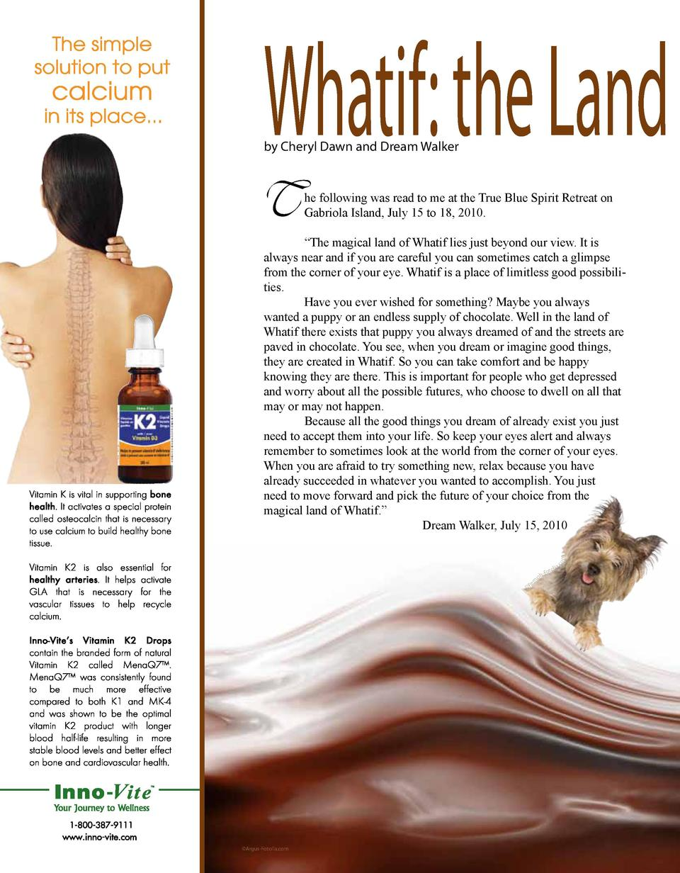 Whatif  the Land by Cheryl Dawn and Dream Walker  T  he following was read to me at the True Blue Spirit Retreat on Gabrio...