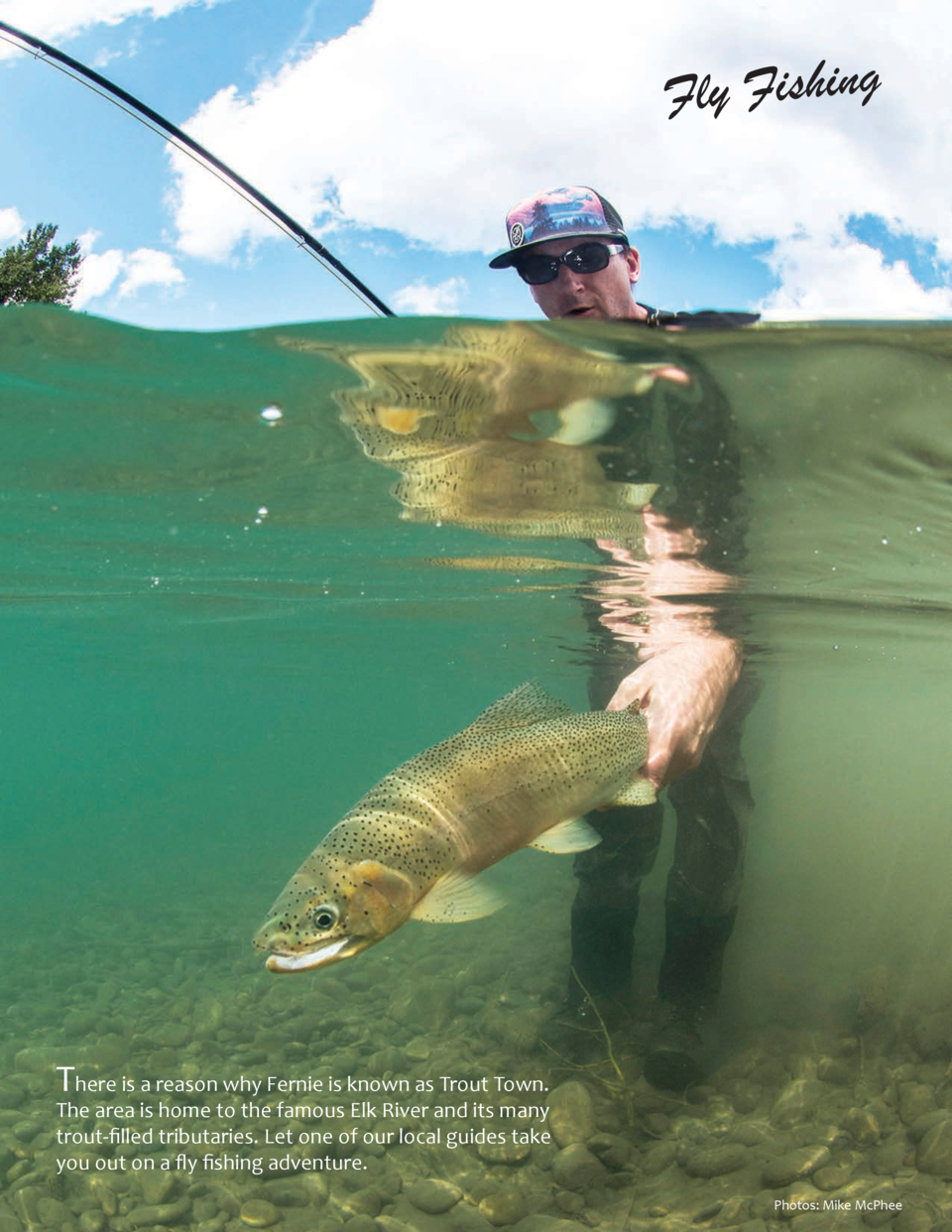 Fly Fishing  There is a reason why Fernie is known as Trout Town.  The area is home to the famous Elk River and its many t...