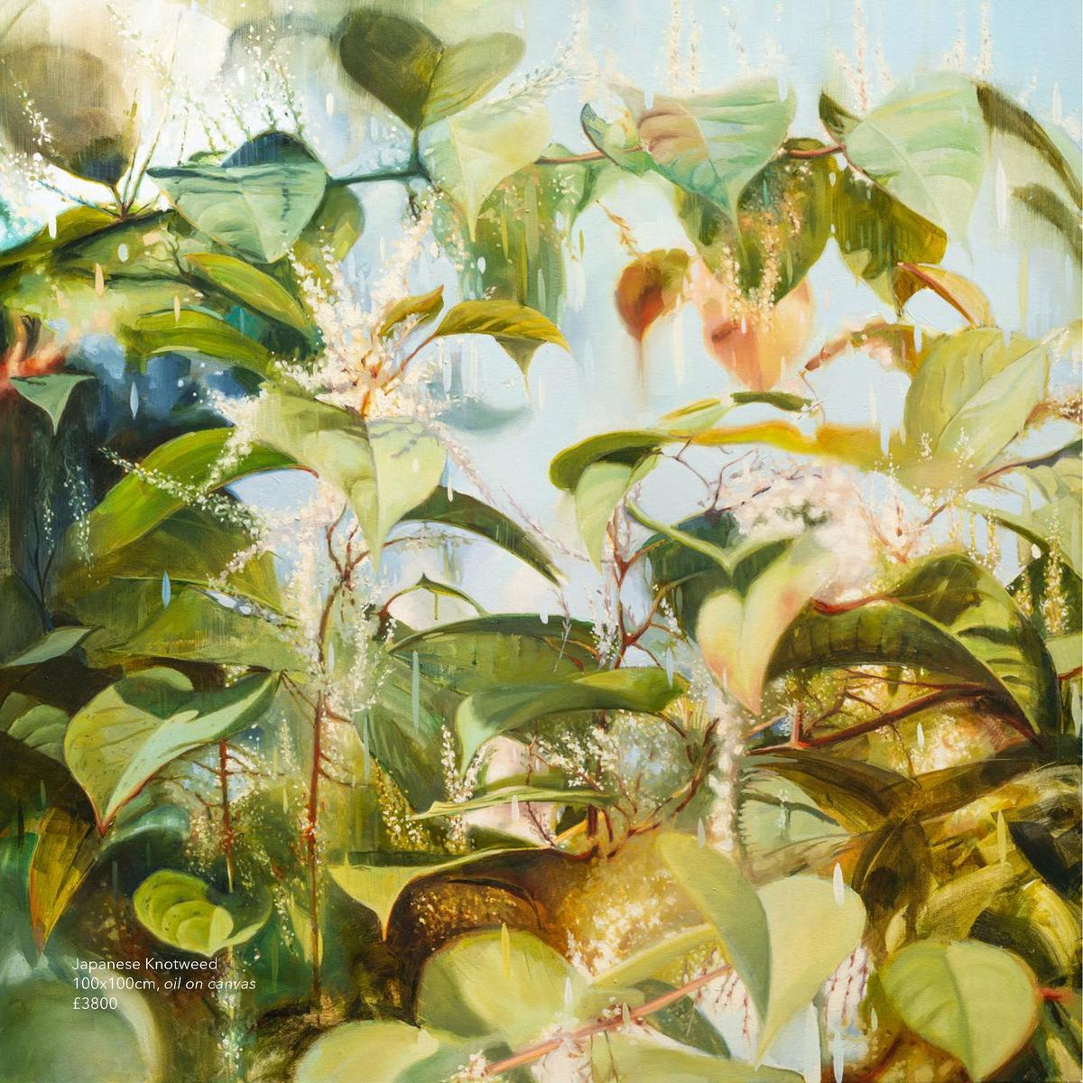 Japanese Knotweed 100x100cm, oil on canvas   3800  Balsam Bashing 25x25cm, oil on board   800  Drifter 25x25cm, oil on boa...