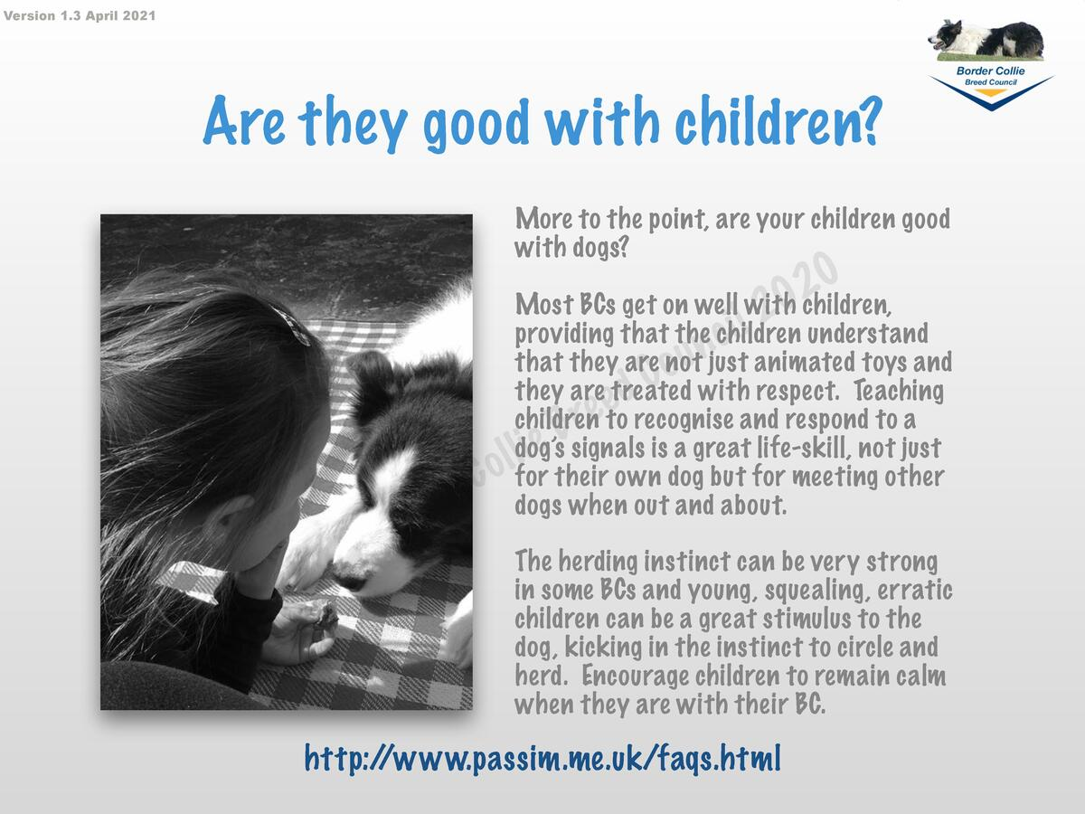 Version 1.3 April 2021  Are they good with children  More to the point, are your children good with dogs   h T     o B e  ...