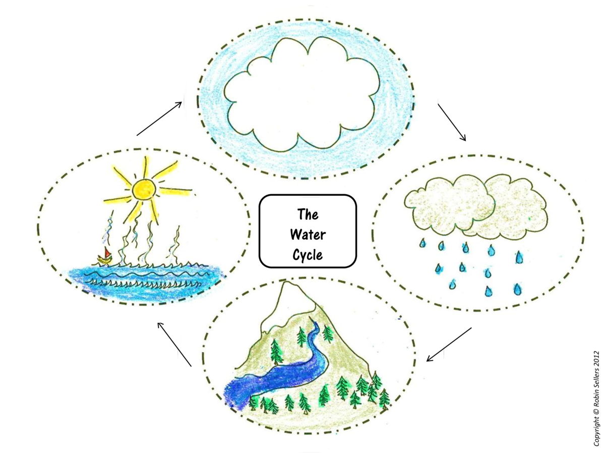 Copyright    Robin Sellers 2012  The Water Cycle